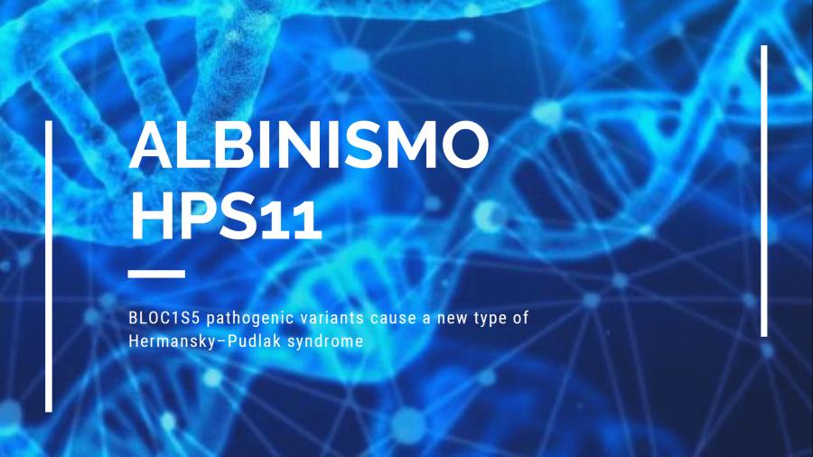 Descubierto otro gen responsable de una nueva forma sindrómica de albinismo- HPS11_1